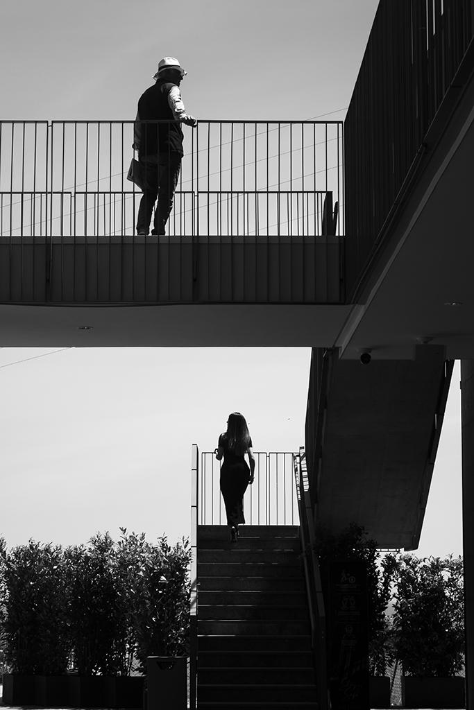 Segnalata Torria & Savona - Serena Burlando