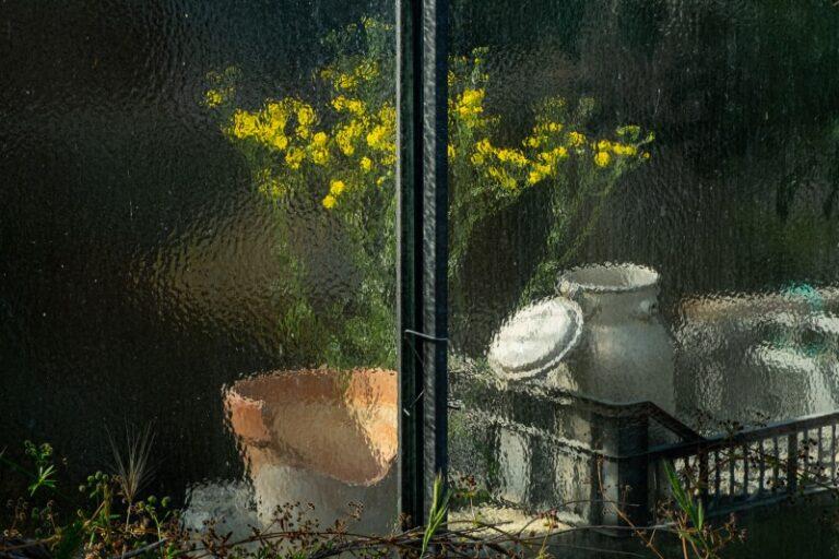 Segnalata - Ornella Massa